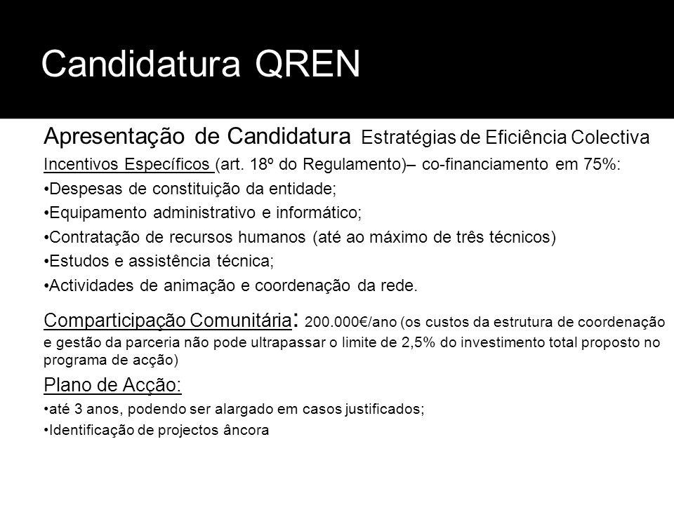 Candidatura QREN Apresentação de Candidatura Estratégias de Eficiência Colectiva.