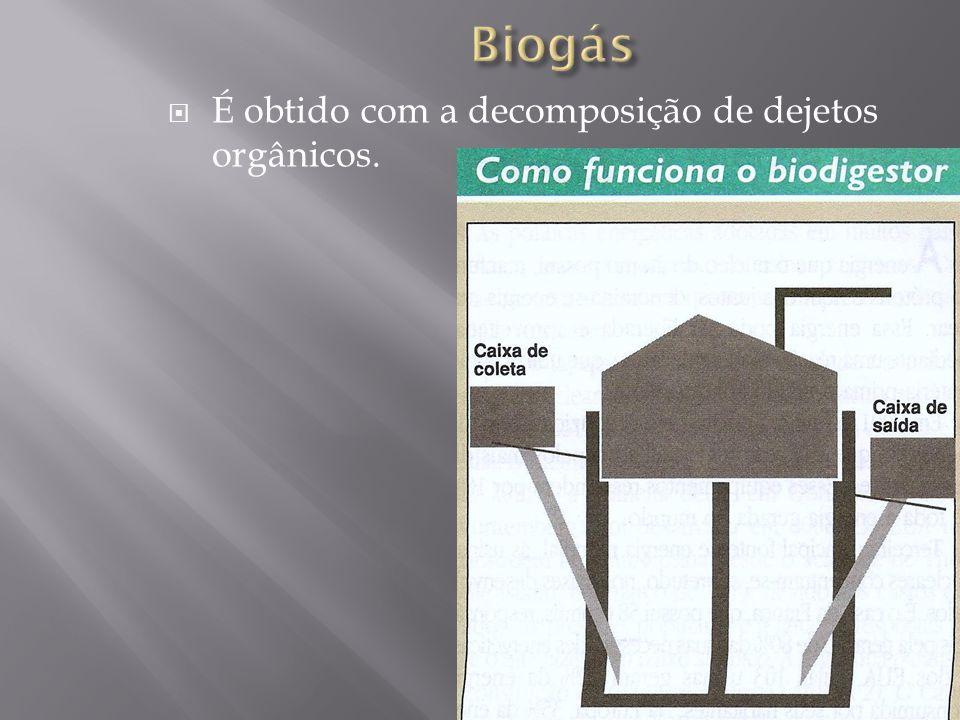 Biogás É obtido com a decomposição de dejetos orgânicos.