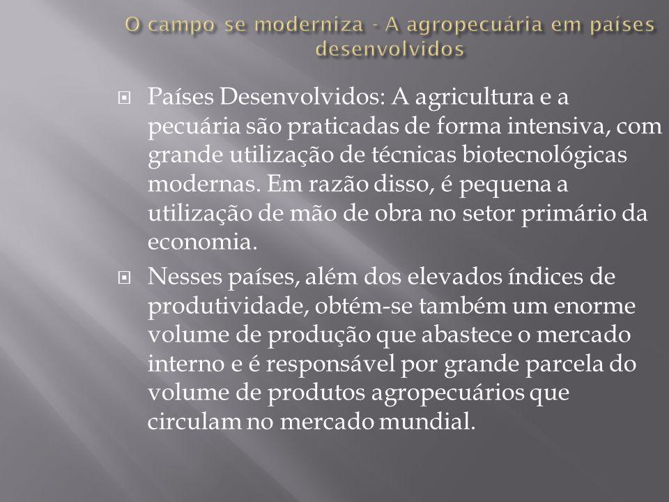 O campo se moderniza - A agropecuária em países desenvolvidos