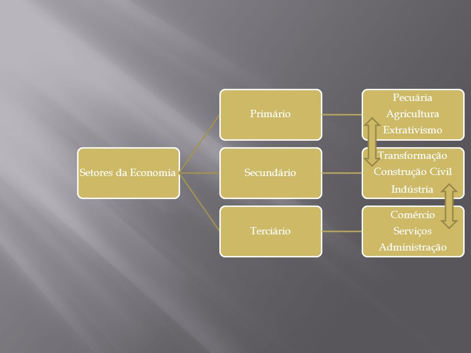 Setores da Economia Primário. Extrativismo. Agricultura. Pecuária. Secundário. Construção Civil.