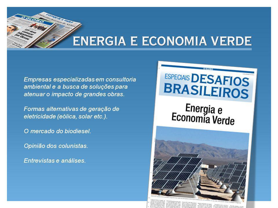 Empresas especializadas em consultoria ambiental e a busca de soluções para atenuar o impacto de grandes obras.