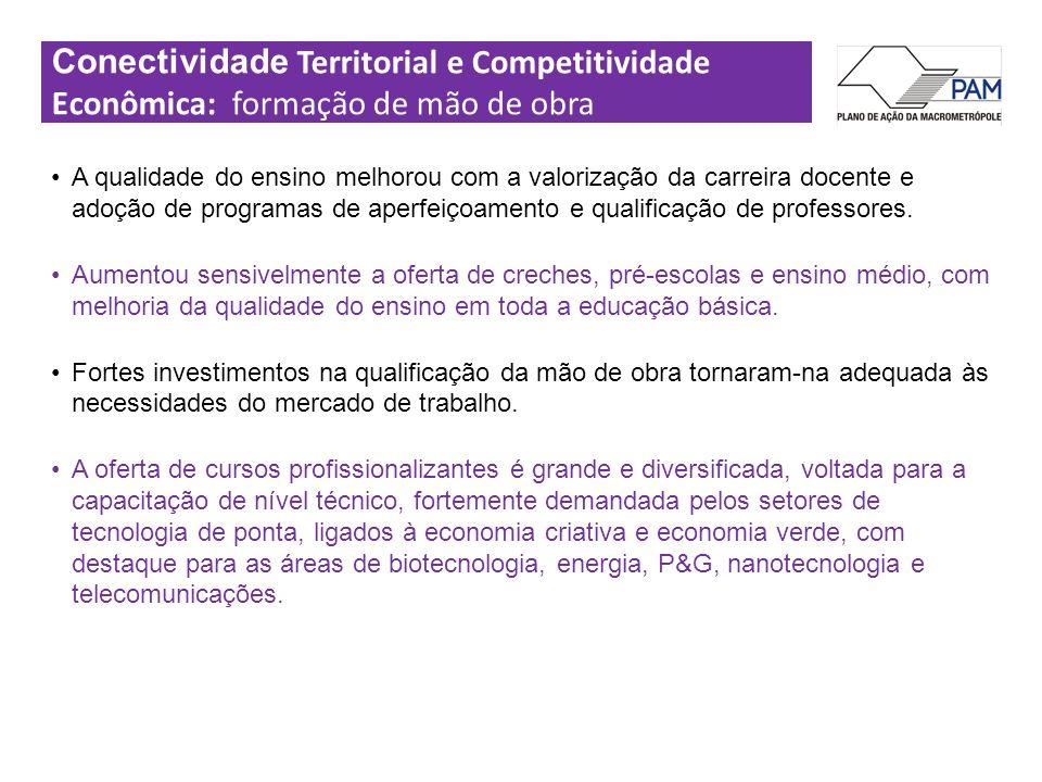 Conectividade Territorial e Competitividade Econômica: formação de mão de obra