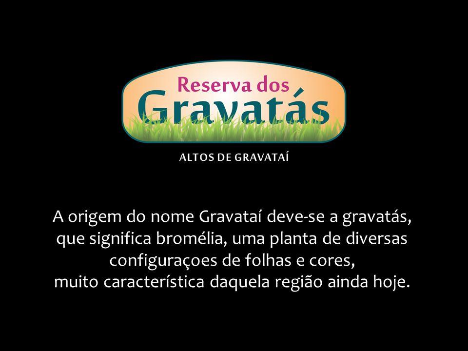 A origem do nome Gravataí deve-se a gravatás, que significa bromélia, uma planta de diversas configuraçoes de folhas e cores, muito característica daquela região ainda hoje.