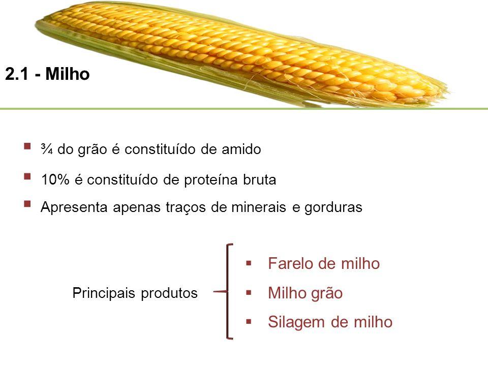 2.1 - Milho Farelo de milho Milho grão Silagem de milho