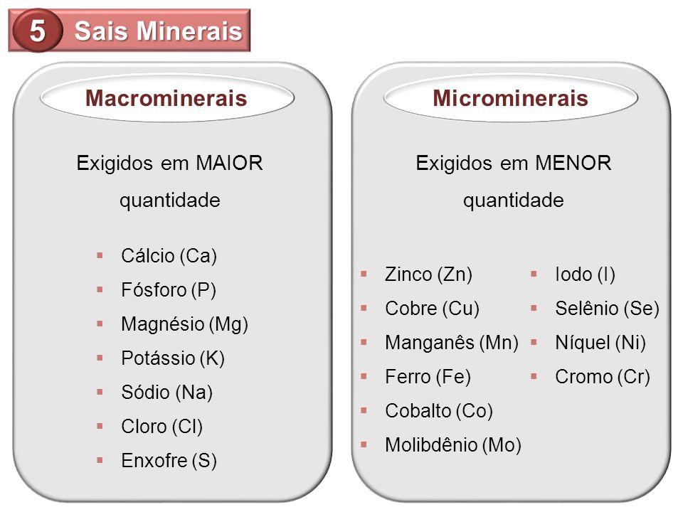 5 Sais Minerais Macrominerais Microminerais