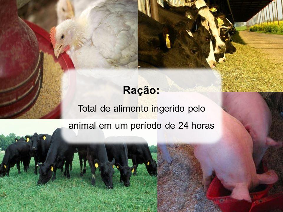 Total de alimento ingerido pelo animal em um período de 24 horas