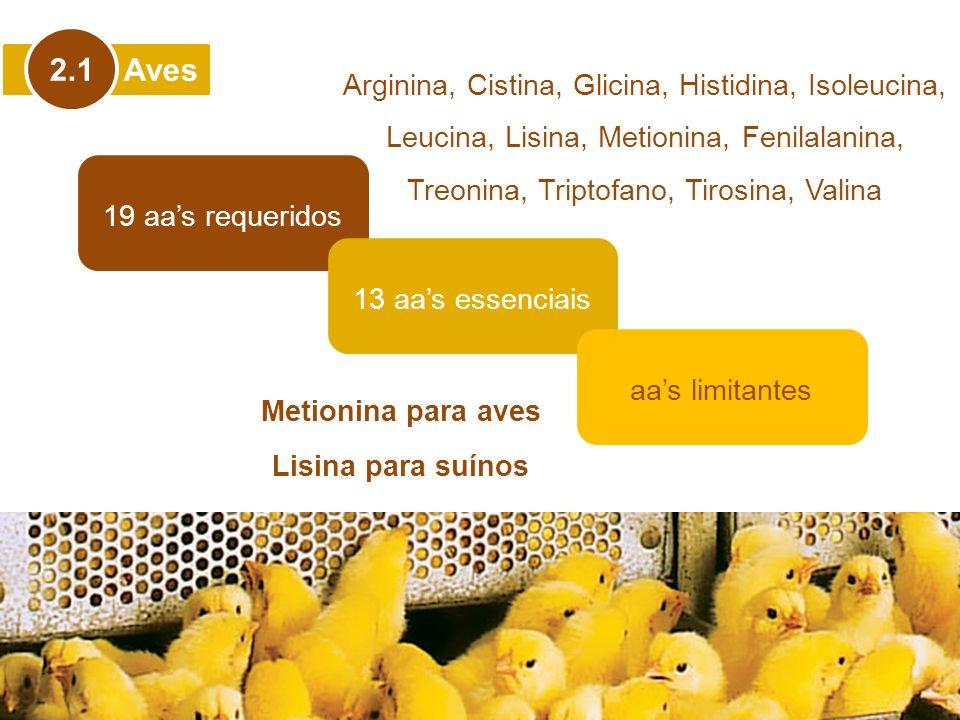 2.1 Aves. Arginina, Cistina, Glicina, Histidina, Isoleucina, Leucina, Lisina, Metionina, Fenilalanina, Treonina, Triptofano, Tirosina, Valina.