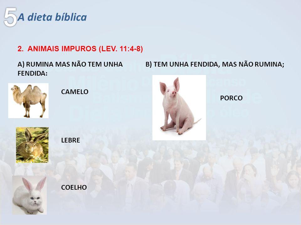 5 A dieta bíblica 2. ANIMAIS IMPUROS (LEV. 11:4-8)