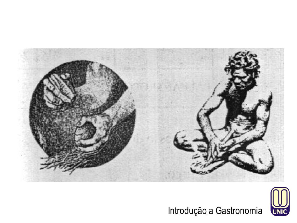 Introdução a Gastronomia