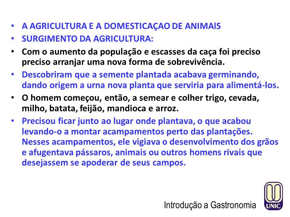 A AGRICULTURA E A DOMESTICAÇAO DE ANIMAlS
