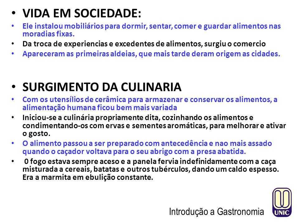 SURGIMENTO DA CULINARIA