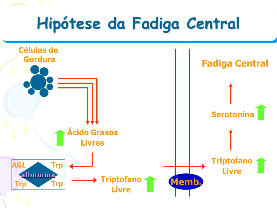 Hipótese da Fadiga Central