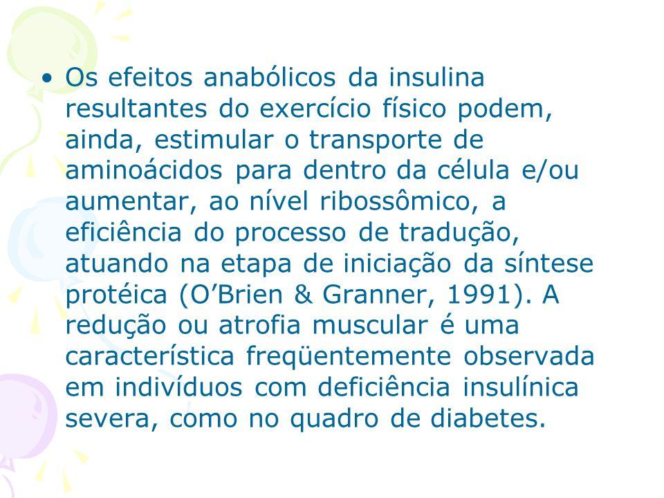 Os efeitos anabólicos da insulina resultantes do exercício físico podem, ainda, estimular o transporte de aminoácidos para dentro da célula e/ou aumentar, ao nível ribossômico, a eficiência do processo de tradução, atuando na etapa de iniciação da síntese protéica (O'Brien & Granner, 1991).