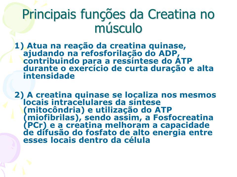Principais funções da Creatina no músculo