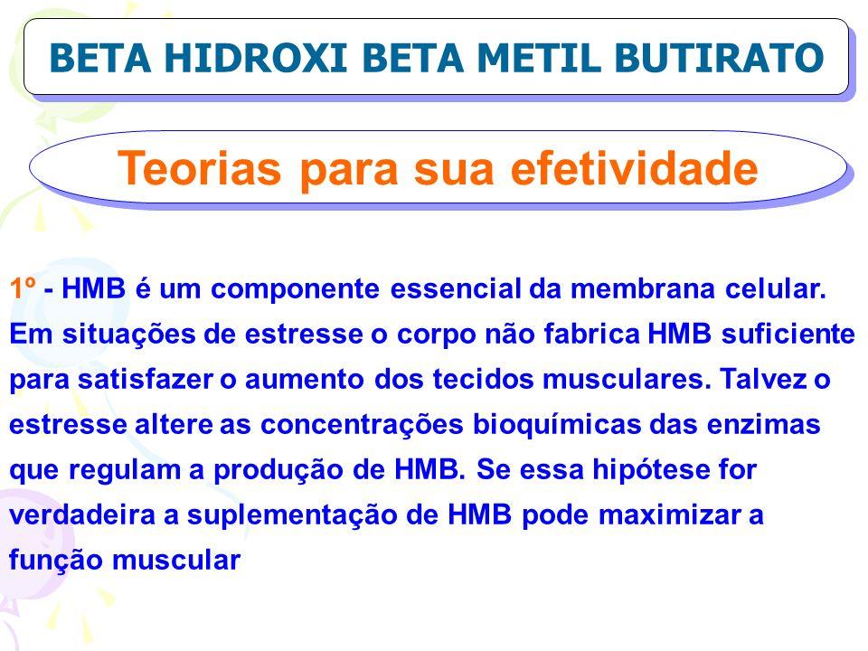 BETA HIDROXI BETA METIL BUTIRATO Teorias para sua efetividade
