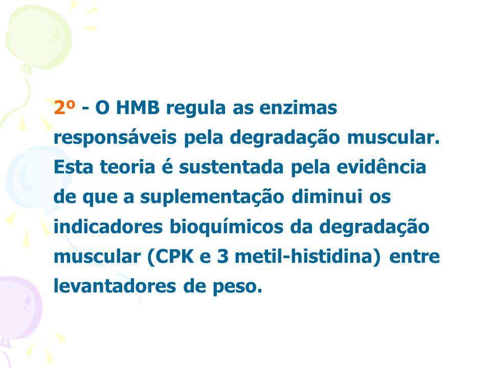 2º - O HMB regula as enzimas responsáveis pela degradação muscular