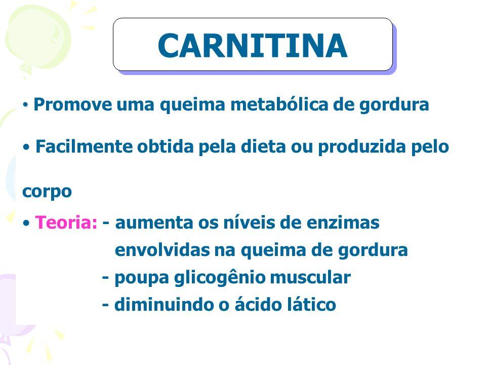 CARNITINA Promove uma queima metabólica de gordura
