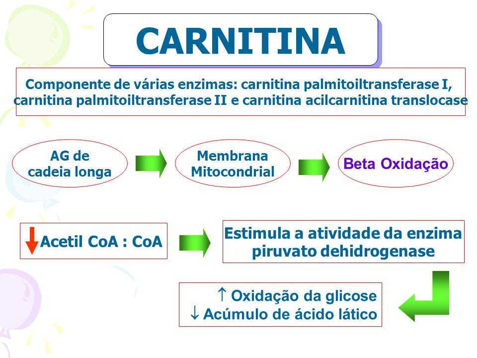 CARNITINA Beta Oxidação Estimula a atividade da enzima