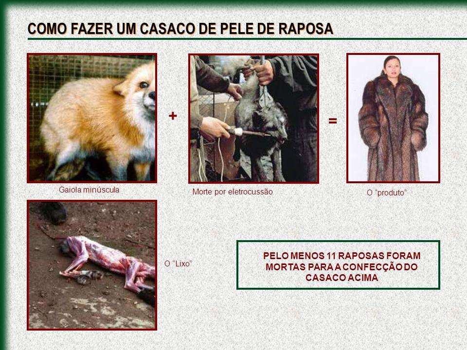 PELO MENOS 11 RAPOSAS FORAM MORTAS PARA A CONFECÇÃO DO CASACO ACIMA