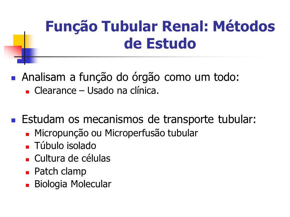 Função Tubular Renal: Métodos de Estudo