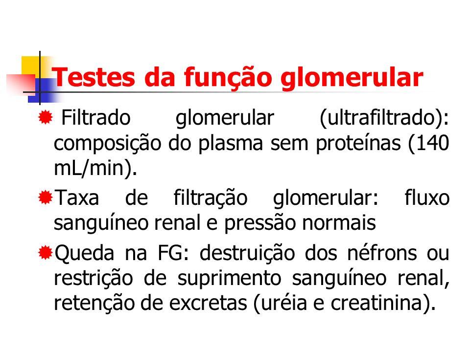Testes da função glomerular