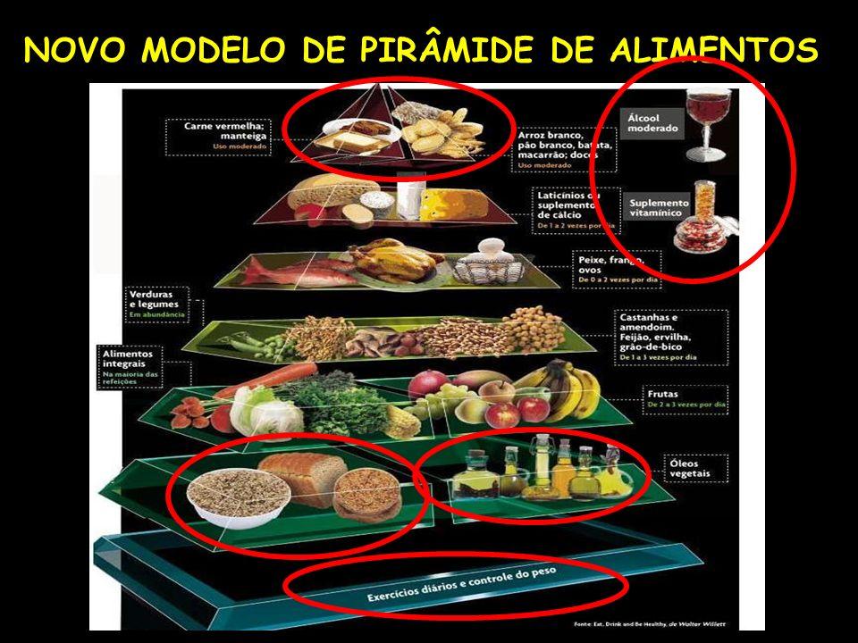 NOVO MODELO DE PIRÂMIDE DE ALIMENTOS