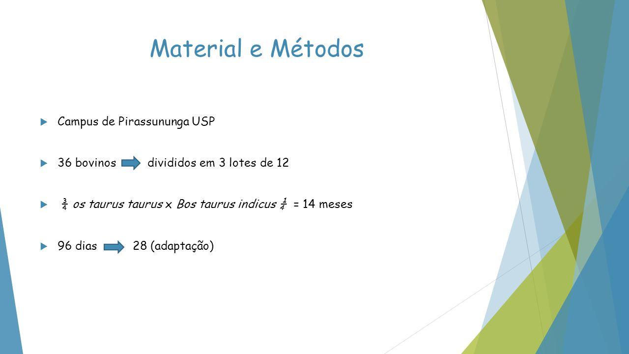 Material e Métodos Campus de Pirassununga USP