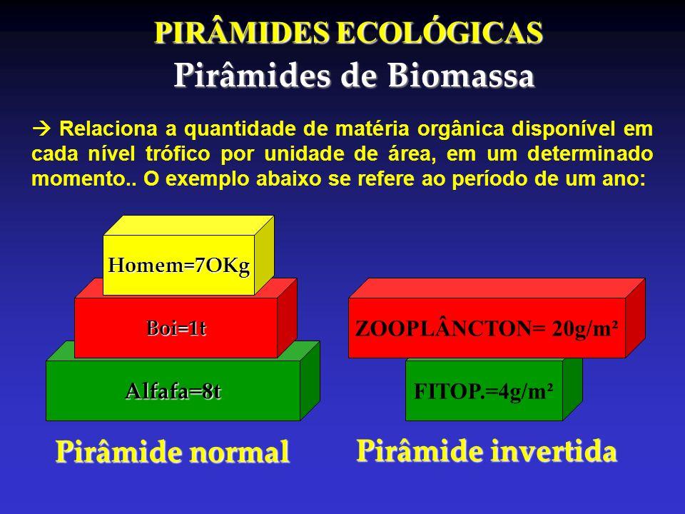 Pirâmides de Biomassa PIRÂMIDES ECOLÓGICAS Pirâmide normal