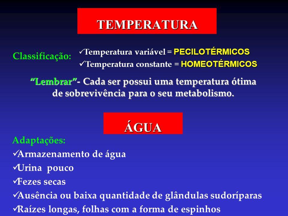 TEMPERATURA ÁGUA Classificação: