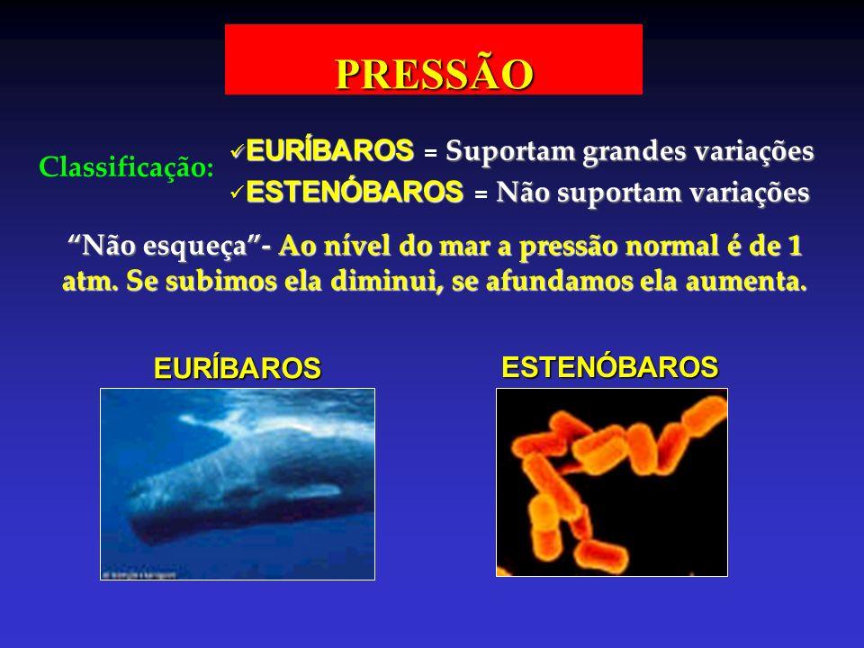 PRESSÃO Classificação: