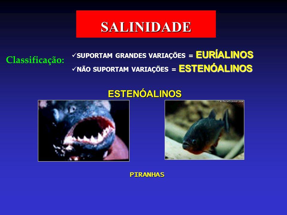 SALINIDADE Classificação: ESTENÓALINOS PIRANHAS