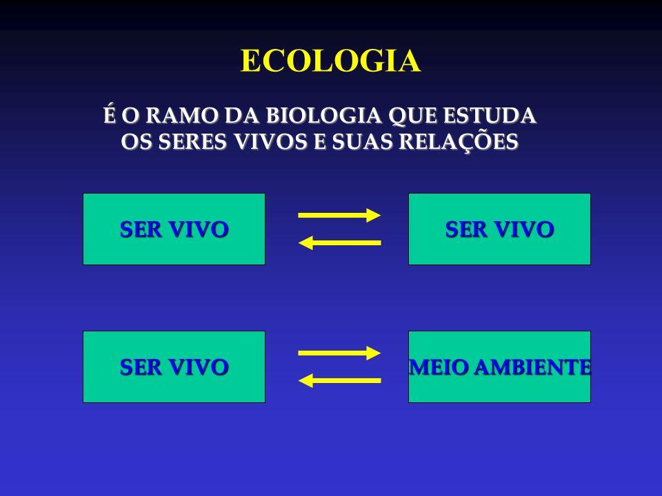 É O RAMO DA BIOLOGIA QUE ESTUDA OS SERES VIVOS E SUAS RELAÇÕES