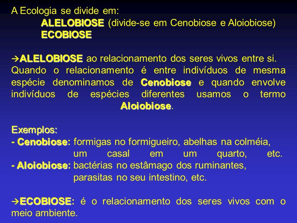 A Ecologia se divide em: