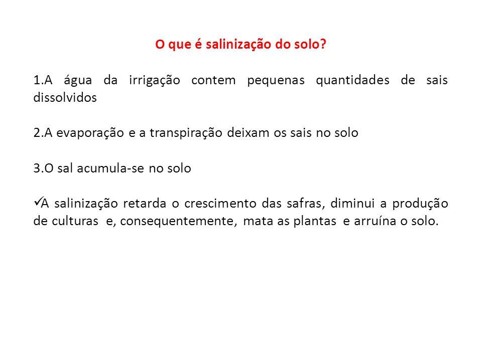 O que é salinização do solo