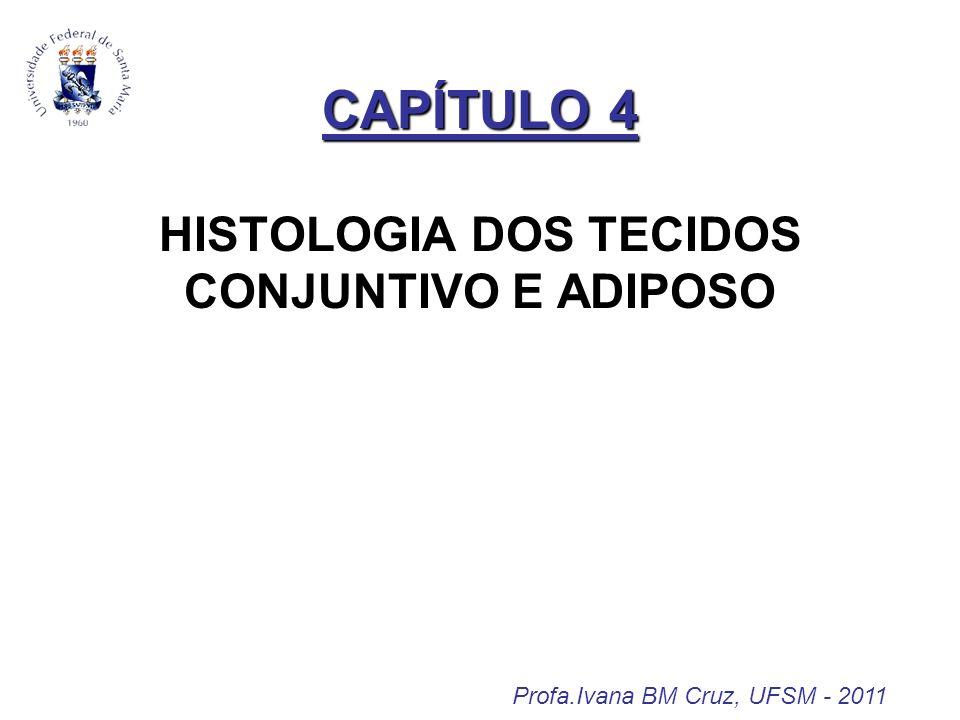 CAPÍTULO 4 HISTOLOGIA DOS TECIDOS CONJUNTIVO E ADIPOSO