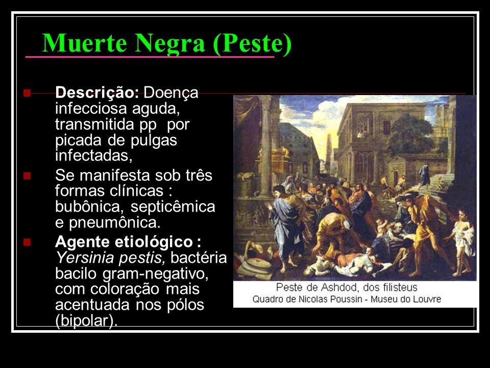 Muerte Negra (Peste) Descrição: Doença infecciosa aguda, transmitida pp por picada de pulgas infectadas,