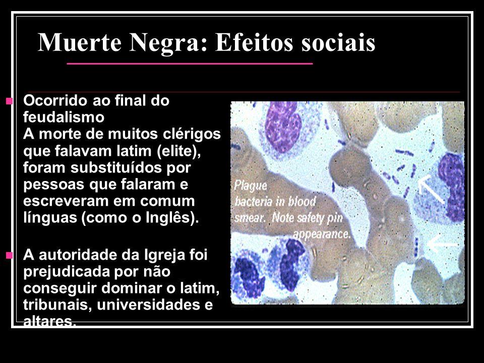 Muerte Negra: Efeitos sociais