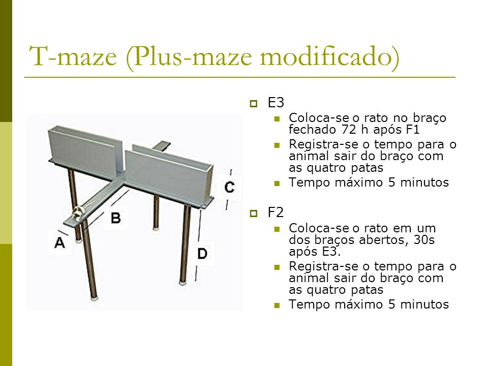 T-maze (Plus-maze modificado)