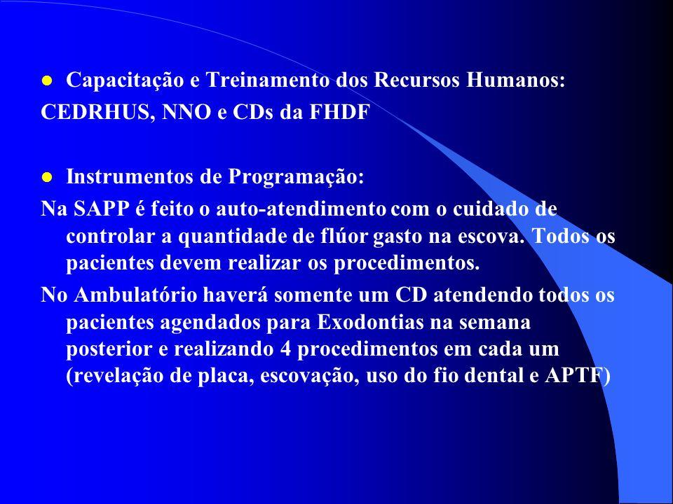 Capacitação e Treinamento dos Recursos Humanos: