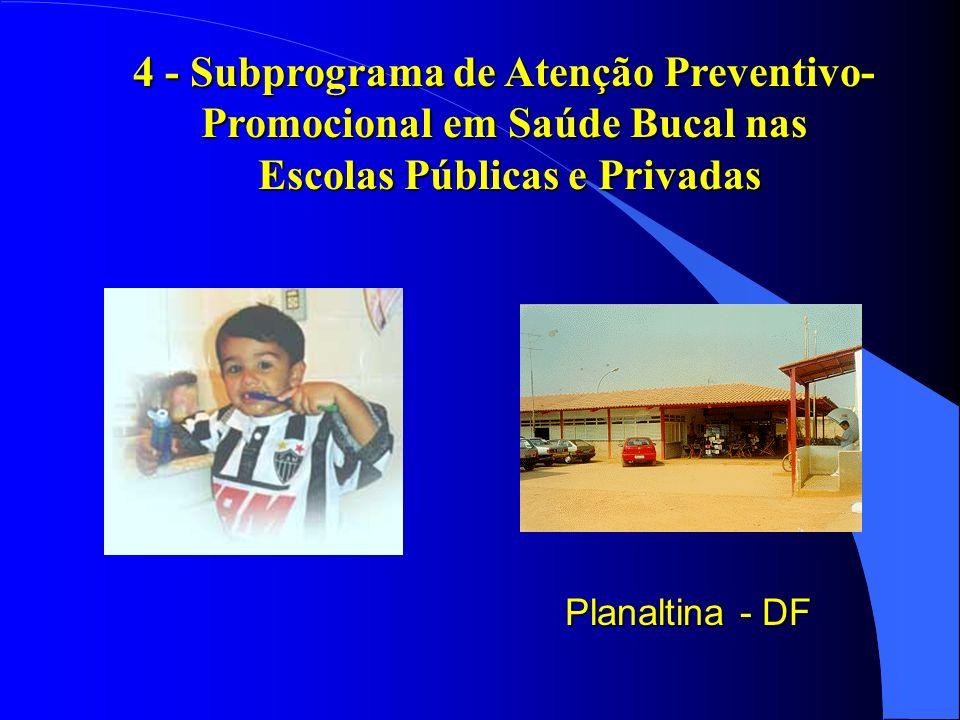 4 - Subprograma de Atenção Preventivo-Promocional em Saúde Bucal nas