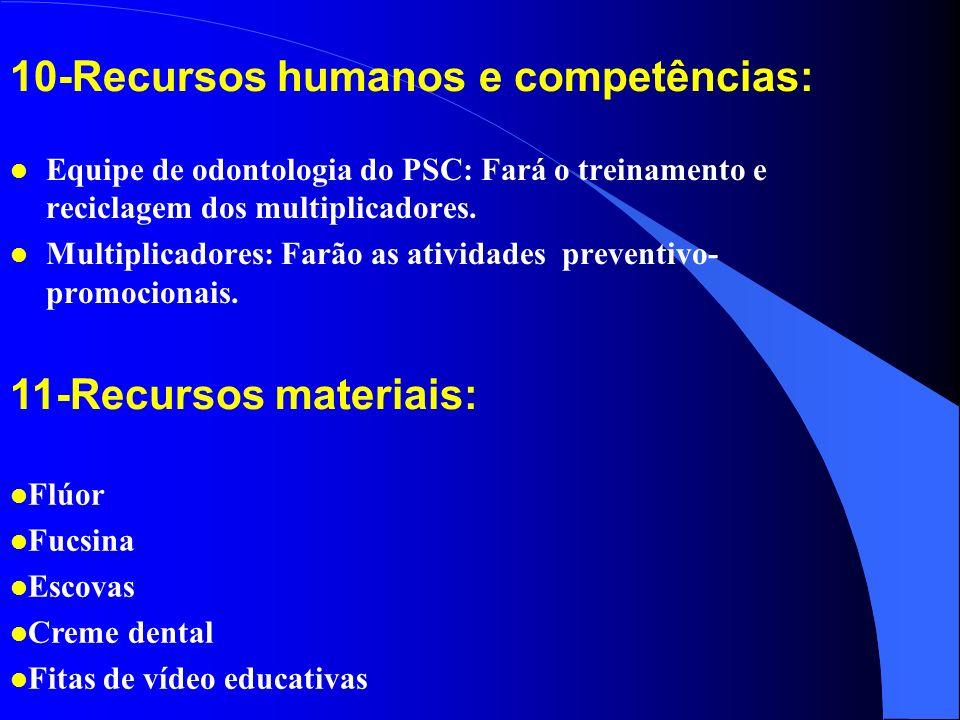 10-Recursos humanos e competências: