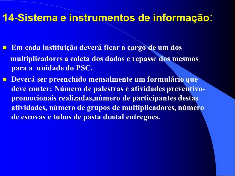 14-Sistema e instrumentos de informação: