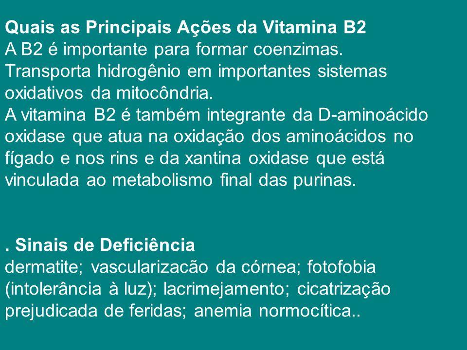 Quais as Principais Ações da Vitamina B2 A B2 é importante para formar coenzimas. Transporta hidrogênio em importantes sistemas oxidativos da mitocôndria.