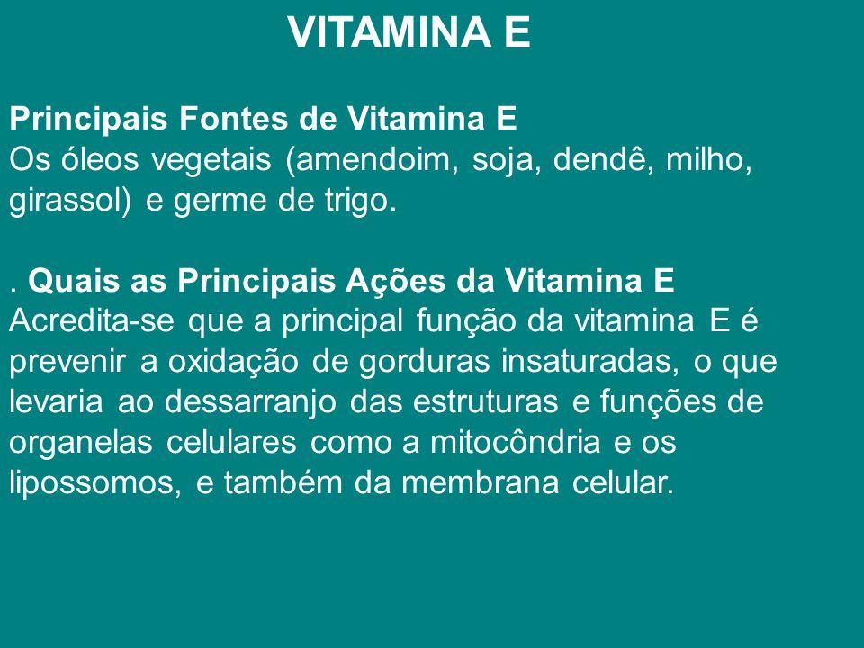 VITAMINA E Principais Fontes de Vitamina E