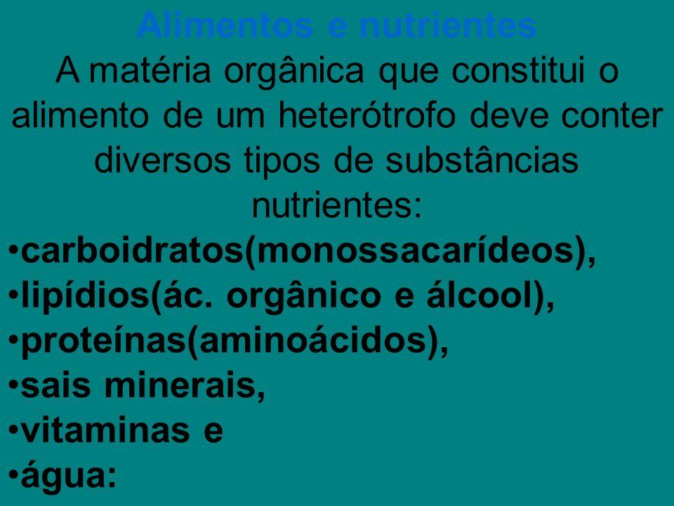 Alimentos e nutrientes A matéria orgânica que constitui o alimento de um heterótrofo deve conter diversos tipos de substâncias nutrientes: