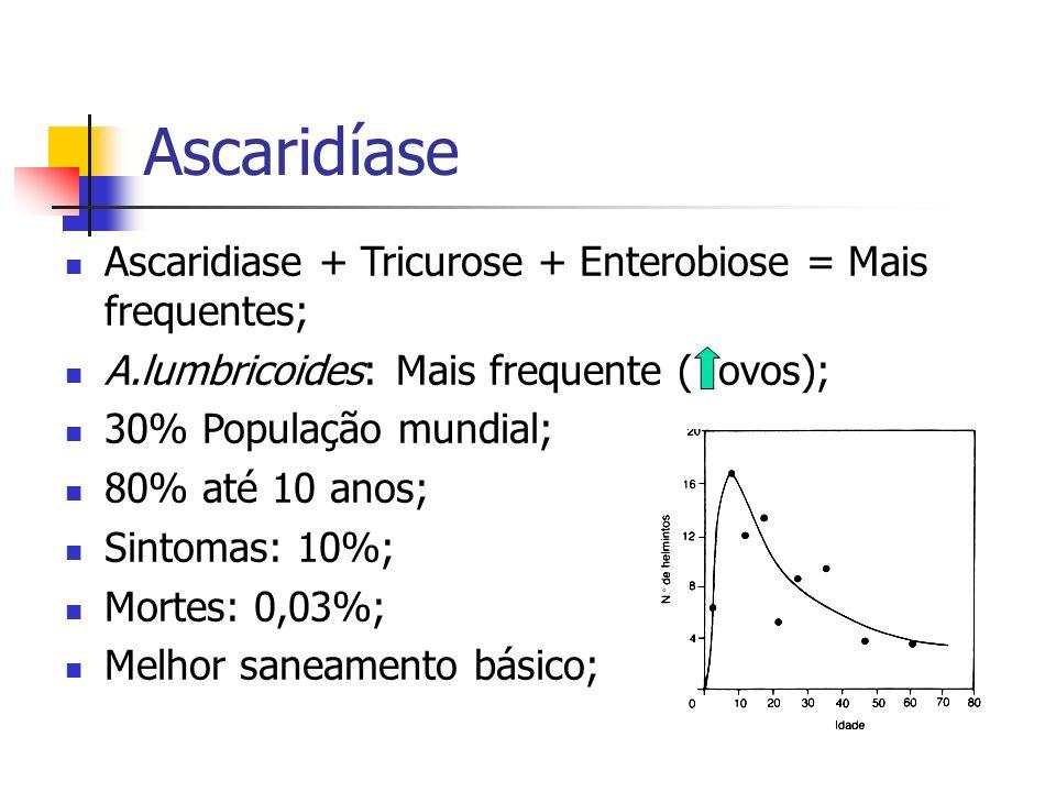 Ascaridíase Ascaridiase + Tricurose + Enterobiose = Mais frequentes;