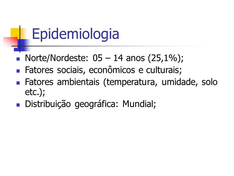 Epidemiologia Norte/Nordeste: 05 – 14 anos (25,1%);