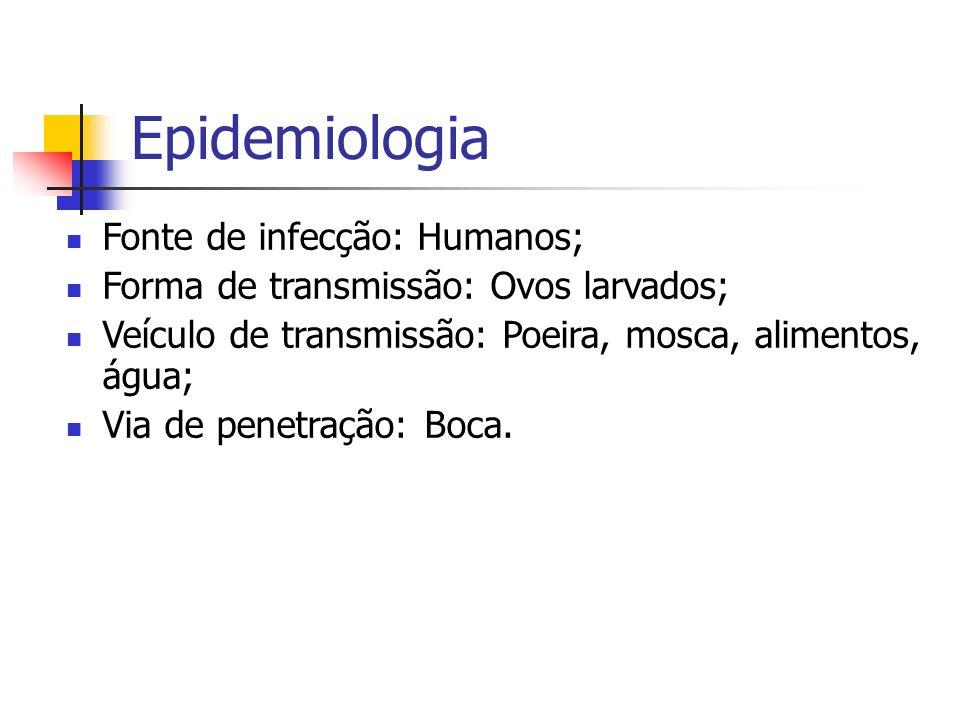 Epidemiologia Fonte de infecção: Humanos;