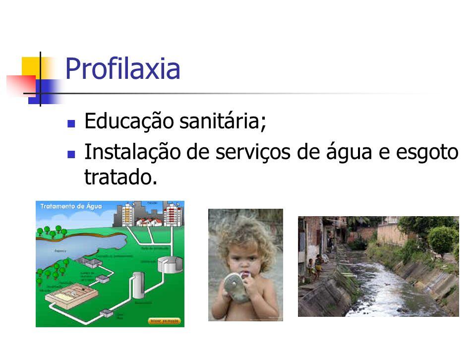 Profilaxia Educação sanitária;
