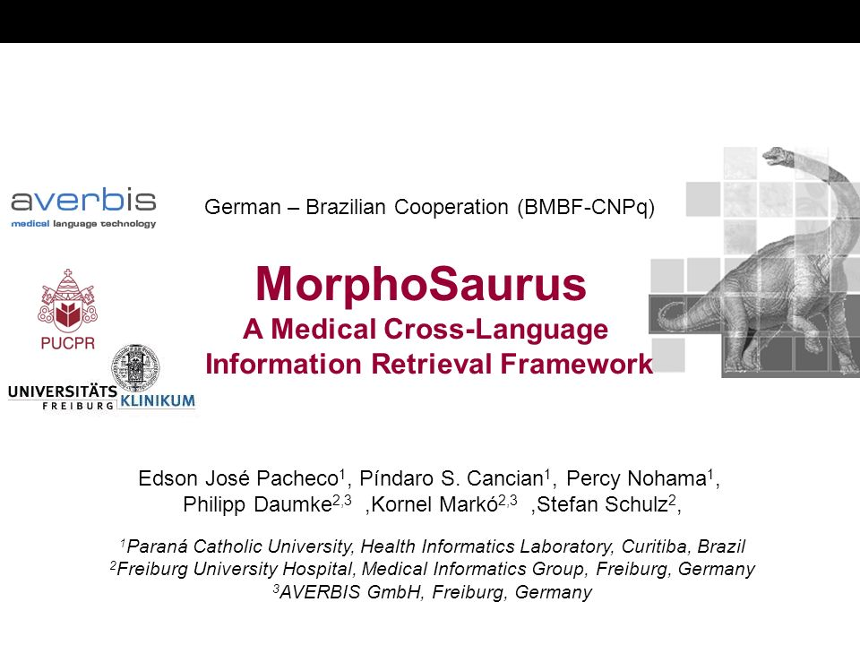 German – Brazilian Cooperation (BMBF-CNPq) MorphoSaurus A Medical Cross-Language Information Retrieval Framework